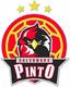 Bm Pinto