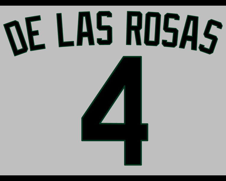 File:DLRroadjersey.png