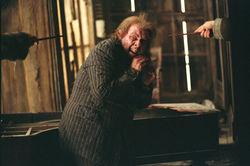 Peter Rääkyvässä röttelössä Siriuksen ja Remuksen uhkaamana.