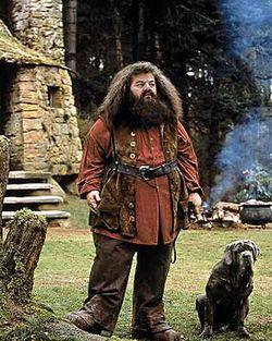 Rubeus Hagrid 02.jpg