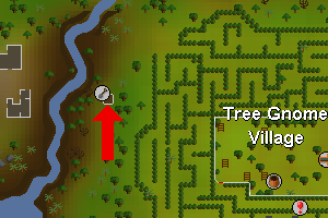 Tree gnome village hedelma.png