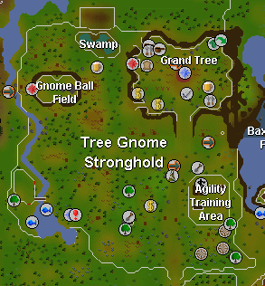 Treegnomestronghold.png