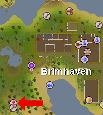 Brimhaven dungeon pos.png