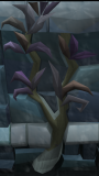 Utuku Tree.png