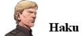 Hask search.png