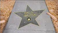 Pamela Hamster's star.JPEG