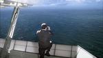 Le Chant des baleines.jpg