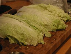 Chinese Cabbage.jpg