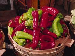 Sweet pepper Cubanelle.jpg
