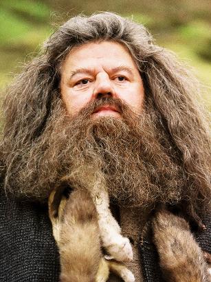 File:Rubeus Hagrid.PNG