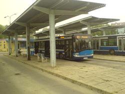 Linia 123 (Mistrzejowice).jpg