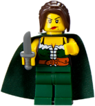 853373 minifigure 5.png