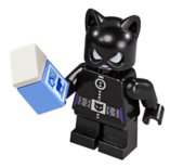 76061-catwoman.png