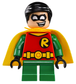 76062-robin.png