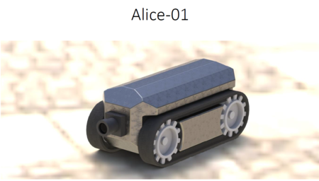 2014 RabMap Alice 1.png
