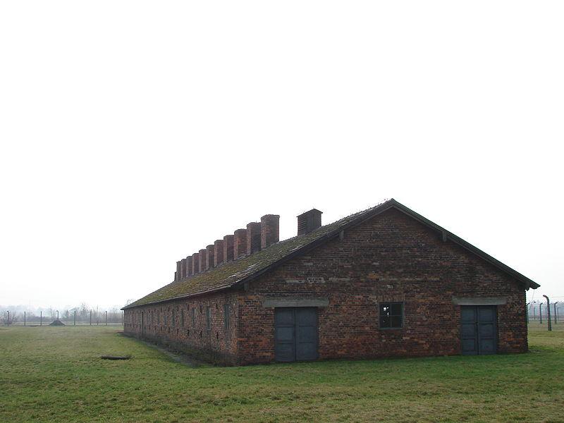 Файл:Auschwitz II-Birkenau - Death Camp - Prisoners Barracks - Oswiecim - Poland - 03.jpg