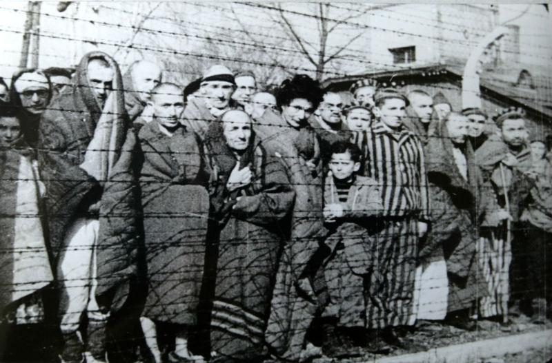 Файл:Auschwitz Liberated January 1945.jpg