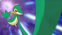 Snivy Vine Whip.png