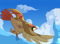 Stark's Pidgeot