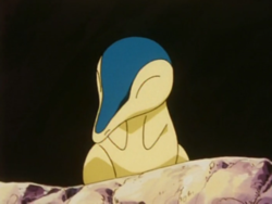 Cyndaquil starter.png