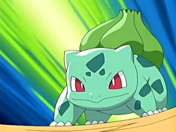 Sean's Bulbasaur.png