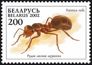 Archivo:2002. Stamp of Belarus 0456.jpg