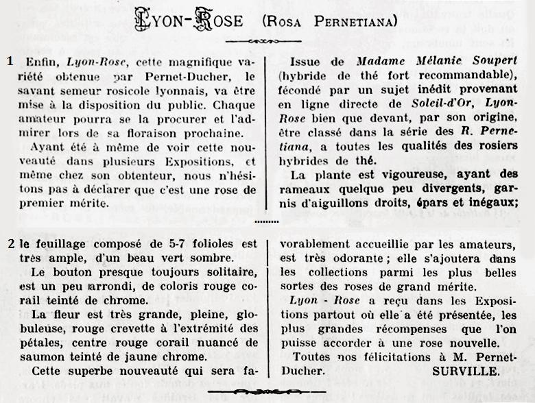 Lyon rose 1907 t1.jpg
