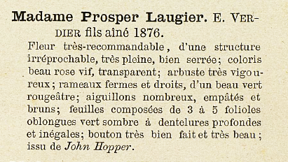 Mme laugier 75.PNG