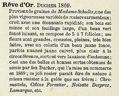 Rêve d'or 262.PNG