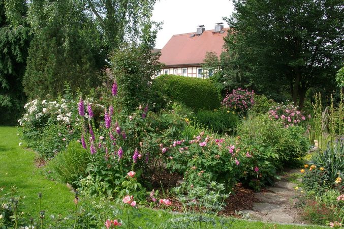 IMGP9452-w Garten Otto Müller.jpg