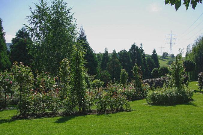 Ettenbühl Gärten (1)-w.jpg