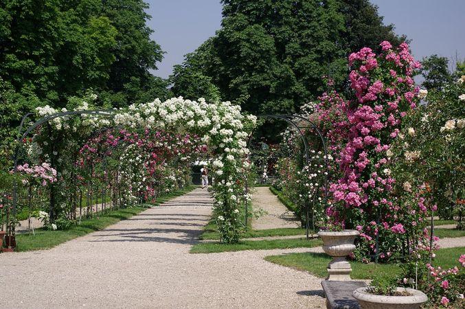 L'Hay Les Roses-L'Hay-IMGP0616-w.jpg