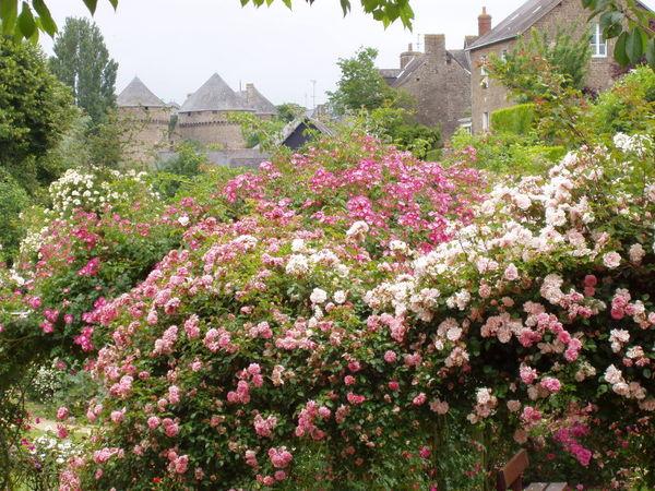 Lassaay les Chateaux large la-roseraie.JPG