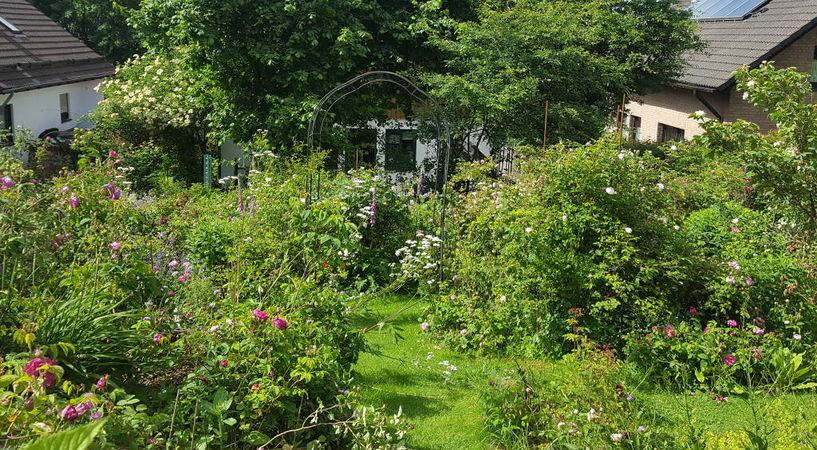 RB Garten8.jpg