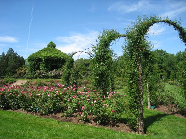 Elizabeth Park, Hartford, CT, WikimediaCommons 1.jpg