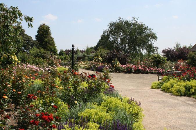 Albans Path through Gardens of the Rose, RNRS.JPG