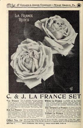 La france 1910.jpg