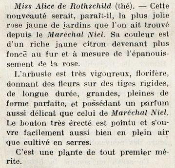 Miss alice de rothschild t 1910.jpeg