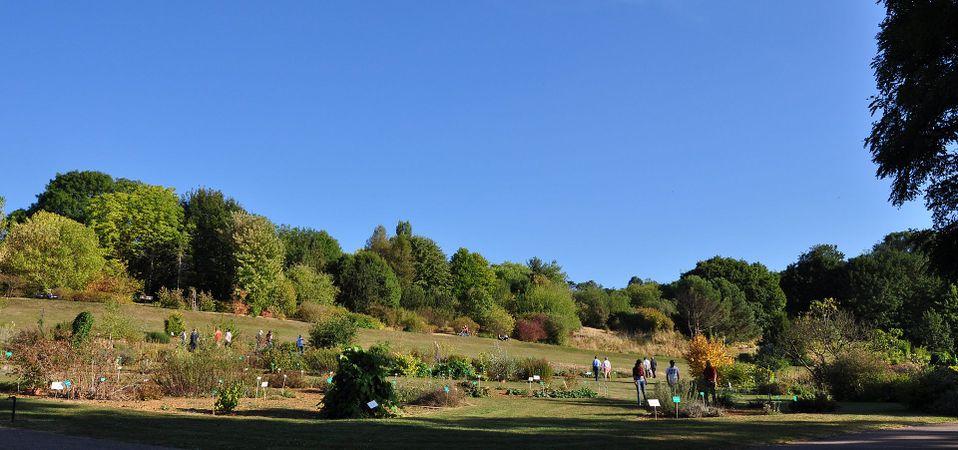 Montet Jardin botanique Montet 3.jpg