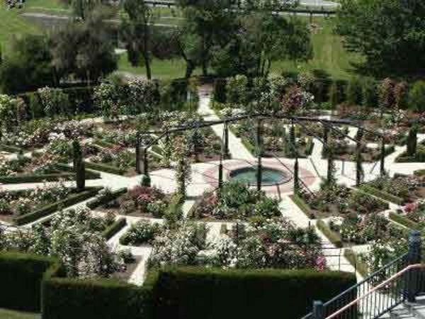 Griffiths rosegarden.jpg