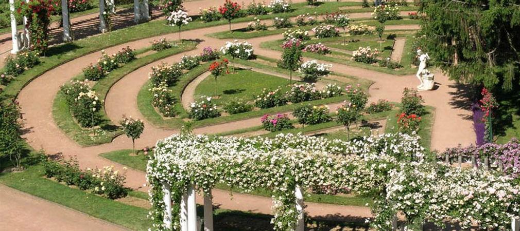 Parc de la Tête d'Or, Société Française des Roses 3-w.jpg