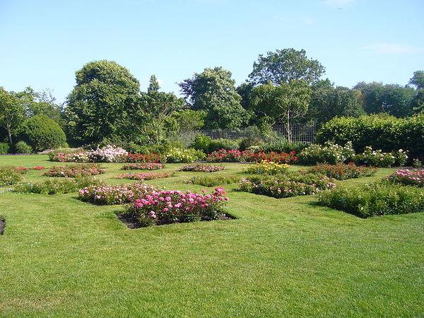 Westbroekpark rozenbedden.JPG