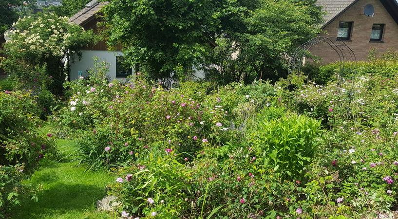 RB Garten6.jpg