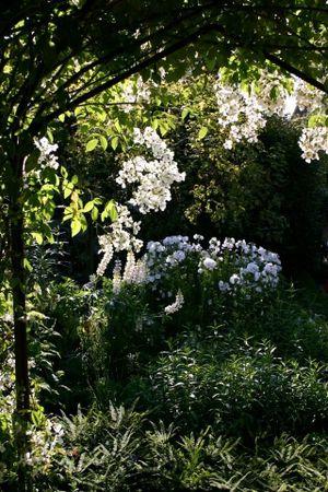 Sissinghurst white garden.jpg