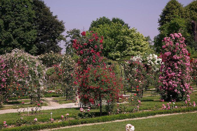 L'Hay Les Roses-L'Hay-IMGP0617-w.jpg