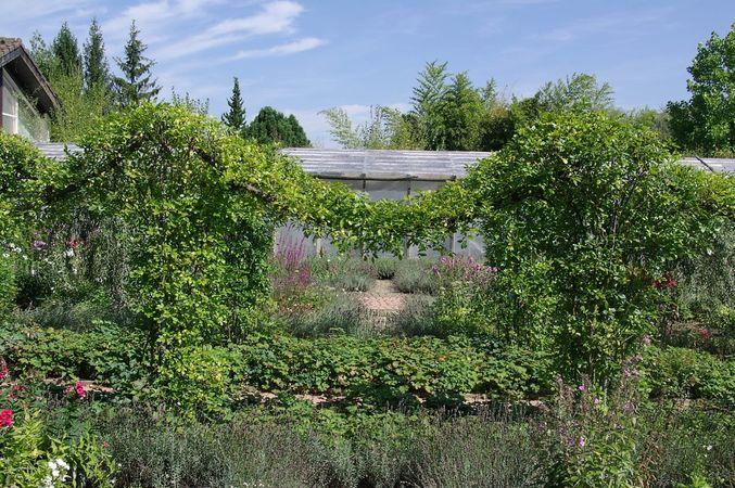 Ettenbühl Gärten (8)-w.jpg