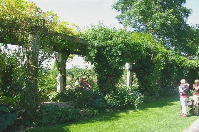 Ettenbühl Gärten (6)-w.jpg