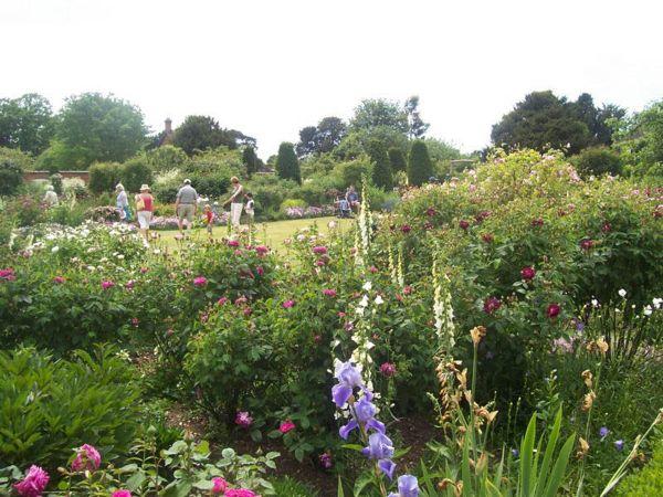Mottisfont Rose Garden-g.jpg