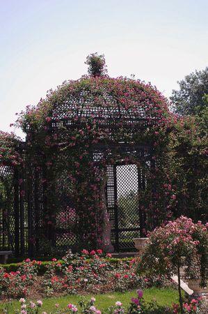 L'Hay Les Roses-L'Hay-IMGP0621-w.jpg