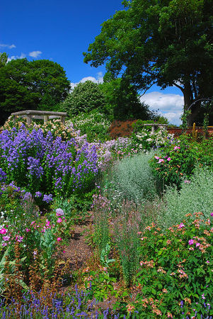 Mottisfont Abbey Gardens.jpg